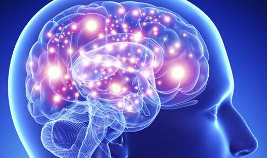 Allenare il cervello [PARTE UNO]